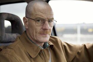 Walt bald