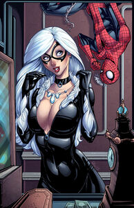 ''What do you think''Black Cat and Spider-Man