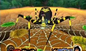 The Arachnid Spider