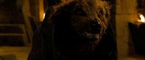 PrinceCaspian shaneWerewolf 940