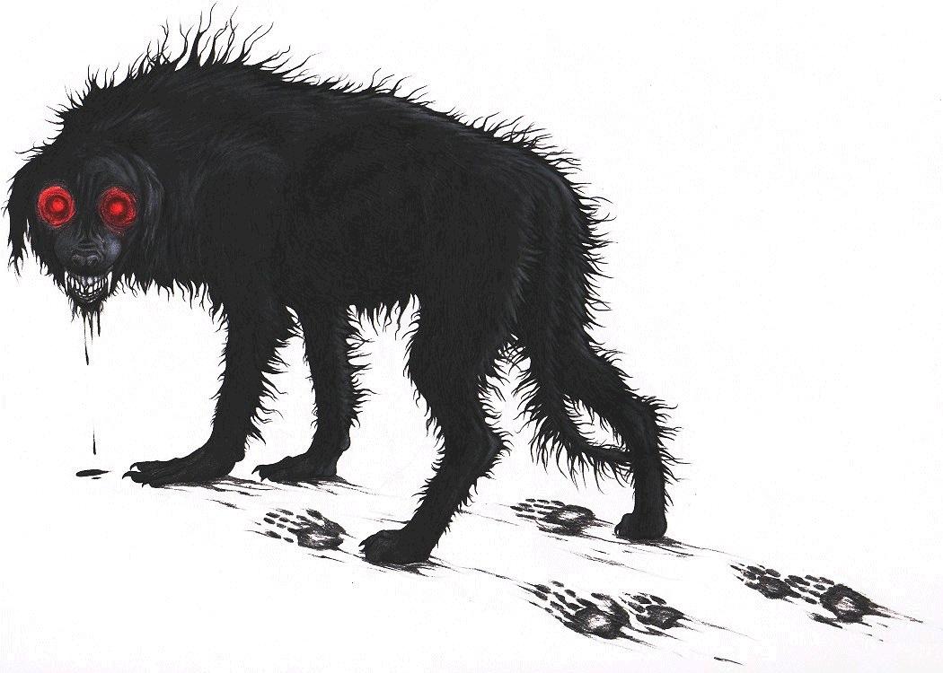 Image result for celtic black dog