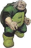 Turtle (DC)