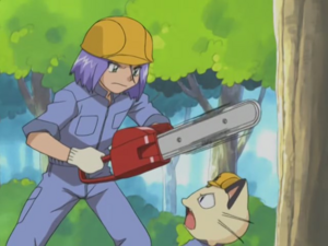 James and Meowth (Taming of the Shroomish)