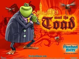 Meet the toad