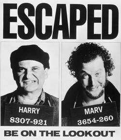 Harry and Marv Escaped