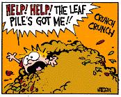 Leaf Pile eats Calvin