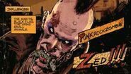Zed's Info Card