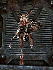 March Hare (AMA)