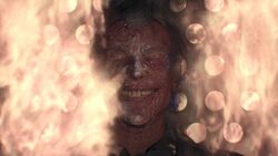 Joker cremated