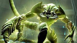 Scorpion SMSD
