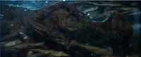 2017Rita Corpse being found