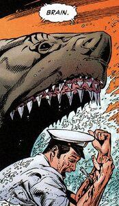 Shark 007