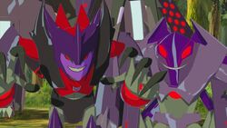 Airazor's and Divebomb's Grins