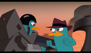 Perry VS perry
