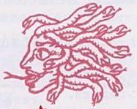 Serpentine Medusa Head