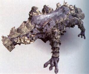 Kuromori 5