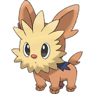506Lillipup Dream