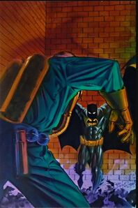 Batman Shadow of the Bat Vol 1 43 Textless