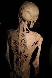 Bonehive