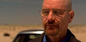 Walter in the desert