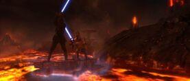 Vader slashing