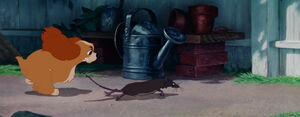 Lady-tramp-disneyscreencaps com-821