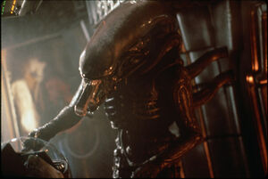 Alien head 02