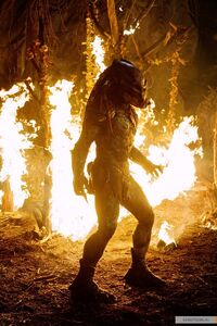 Predator-predators-2010-movie-14721618-800-1200