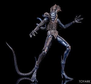 NECA-Alien-Series-11-Figures-020