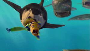 Oscar leads Lino towards the Whale Wash
