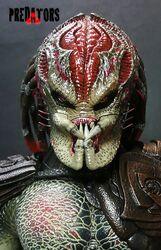 513 predator