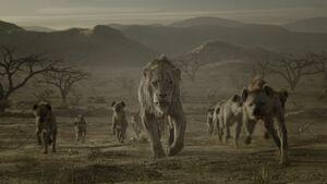 Lion King 2019 Screenshot 1804
