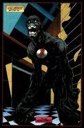 Black Flash 0004