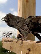 611full-charlotte's-web----------------------------------(2006)-poster