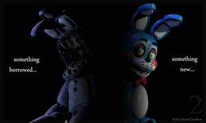 Bunny-New-Model