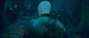 Voldemort forest