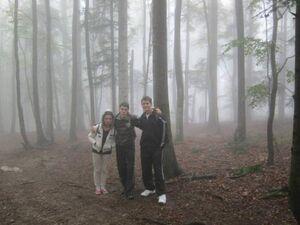 Slenderman-foggy-woods