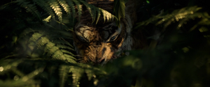 Shere Khan 2018 Stalking