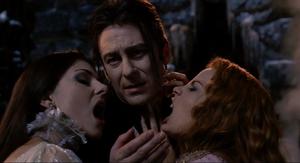 Verona Dracula Aleera comfort
