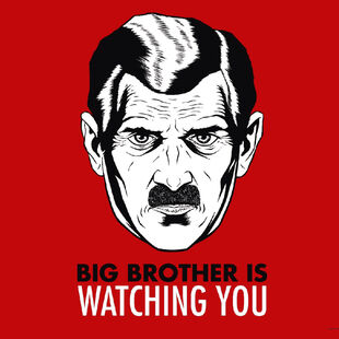 Big Brother is watching you artwork poster.
