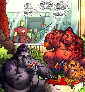 Super-Apes 2
