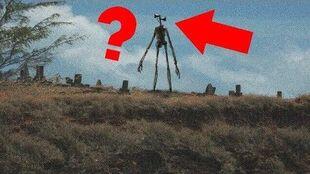 Who is Siren Head?
