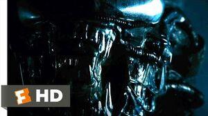 Alien (1979) - The Alien Appears Scene (3 5) Movieclips