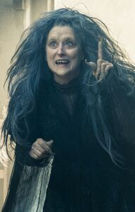 Into-the-woods-meryl-streep-1