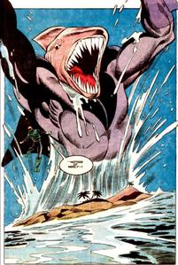Shark 002.jpg