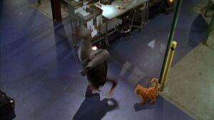 Garfield-movie-screencaps.com-8195