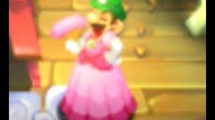 Mario & Luigi Superstar Saga + Bowser's Minions The Peach Scam