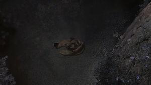 Gothel cloak
