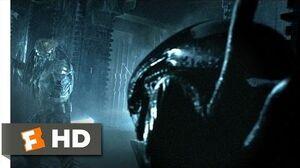 AVP Alien vs. Predator (2 5) Movie CLIP - Alien vs