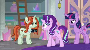 Starlight Glimmer greets the photographer S8E13